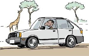 [천자 칼럼] 아프리카 누비는 한국 자동차