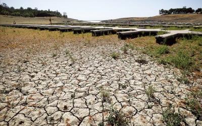 식품물가 덮친 가뭄 쇼크…더 커진 '인플레 공포'