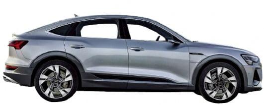 아우디 'e-트론 시리즈' 출격…전기차 라인업 두 배 늘린다