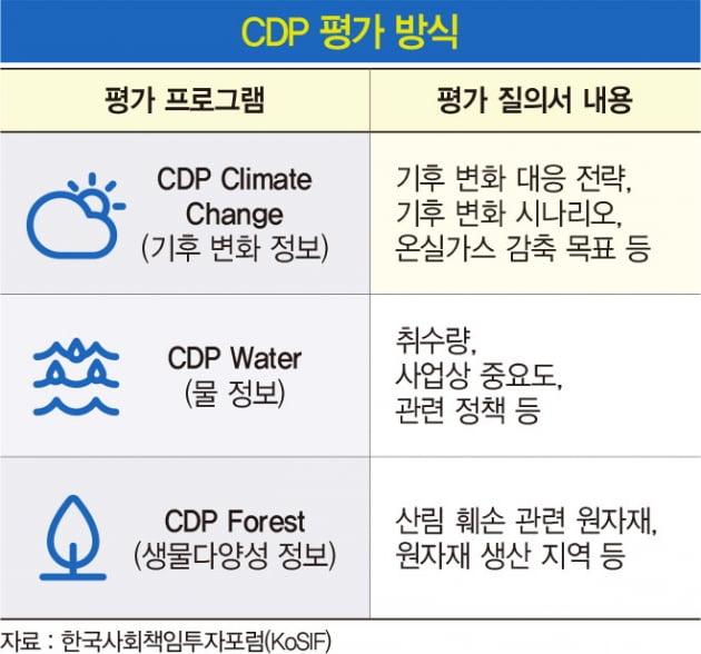 탄소 배출 감축 톱10 기업…CDP 보고서 분석해 보니