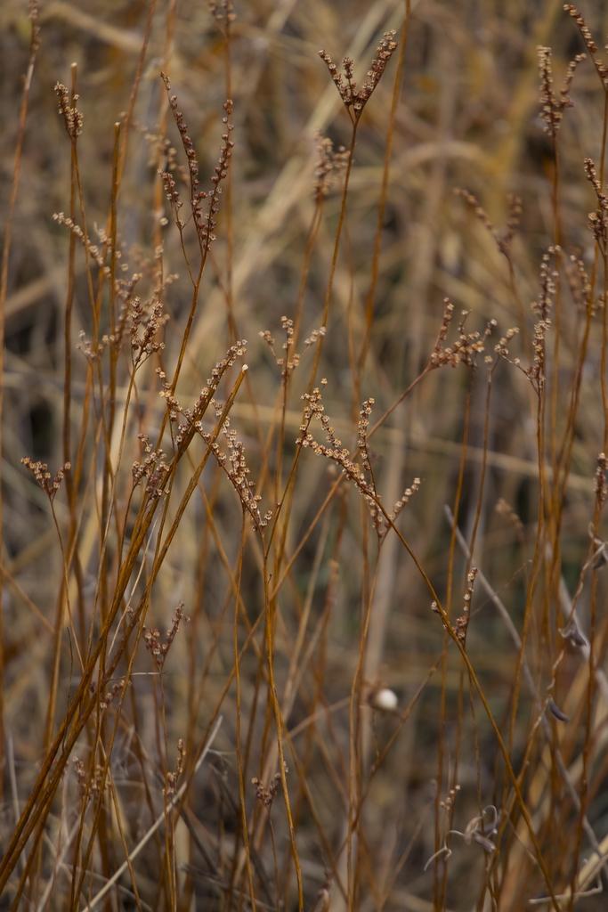 [imazine] 습지의 봄 ② 깊은 산속 옹달샘…문경 돌리네 습지