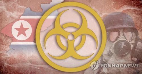 """미 당국자 """"북 핵·생화학무기는 위협…한반도 억지에 우선순위""""(종합)"""