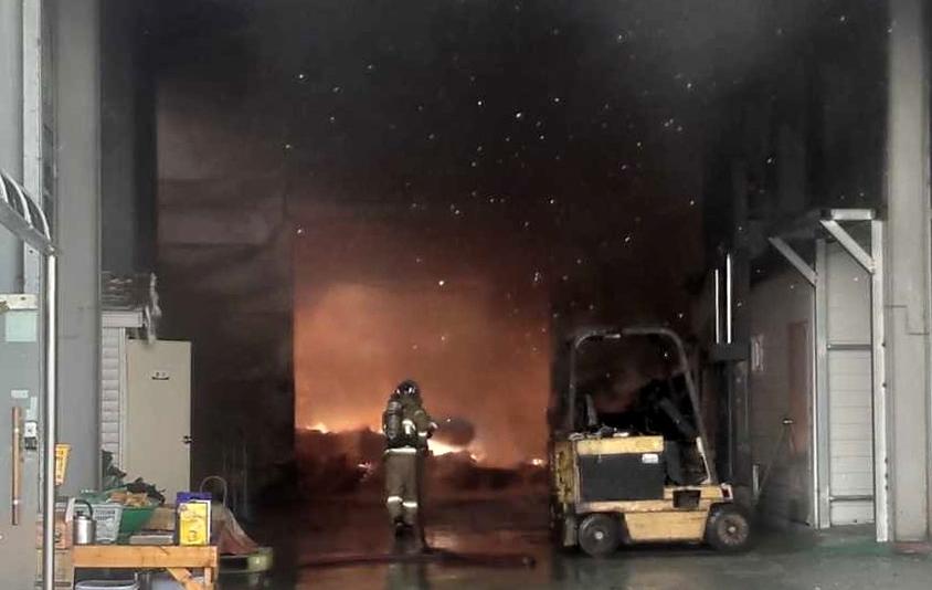 강릉 먹태 포장공장서 불…인근 초교생들 대피