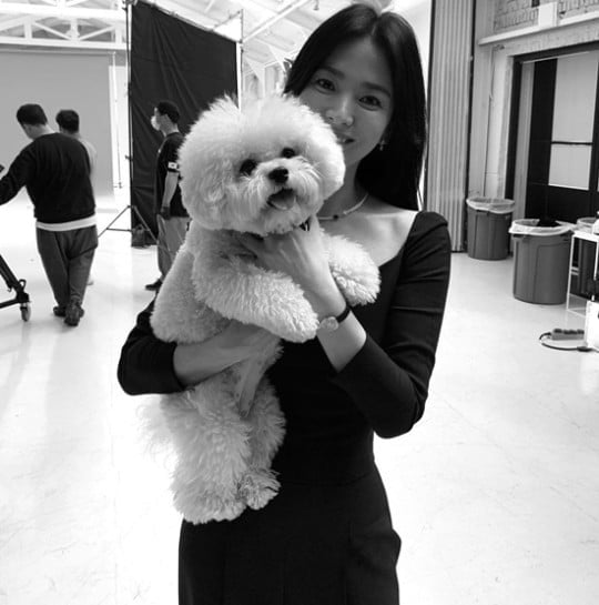 41세 송혜교 `숨멎` 미모…흑백 필터 압도