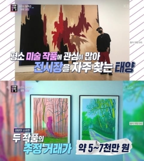 민효린♥ 태양, 100억대 집에 수집 미술품만 `20억↑`