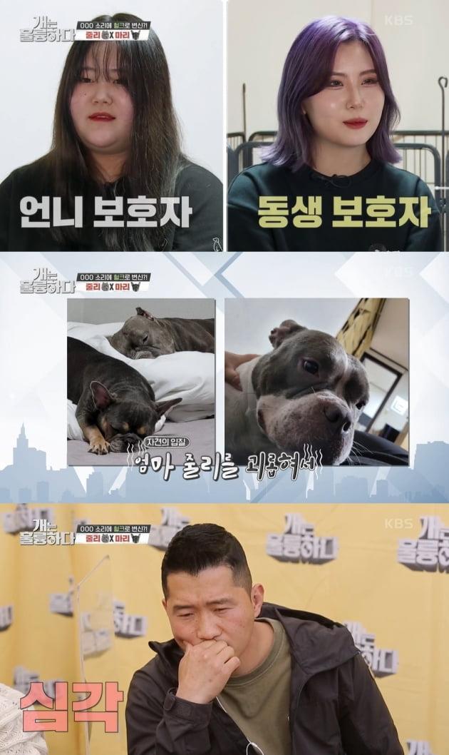 /사진=KBS2 '개는 훌륭하다' 방송화면