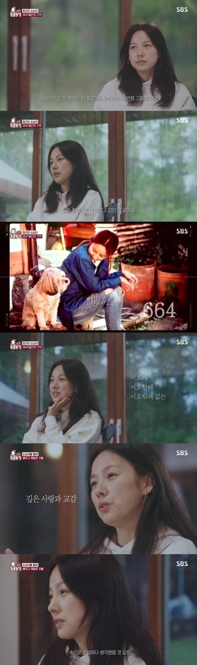 사진=SBS 'TV동물농장' 방송 캡처