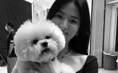 송혜교, 40대 맞아?… 비현실적 미모