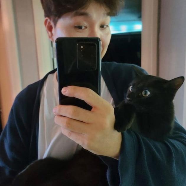 박수홍 / 사진 = 박수홍 반려묘 인스타그램