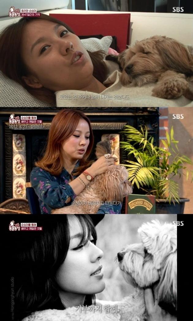 사진=SBS '동물농장' 방송 화면.