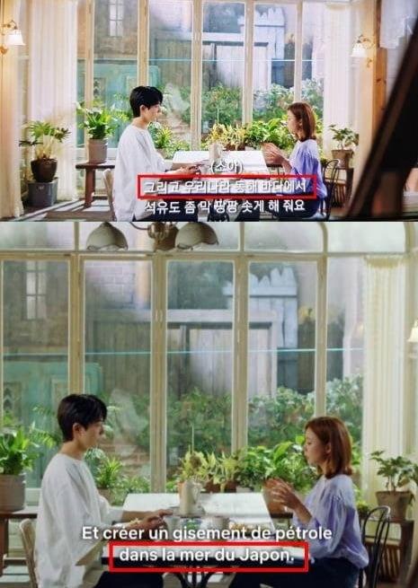 넷플릭스의 '하백의 신부' 자막 오류/ 사진=반크 캡처