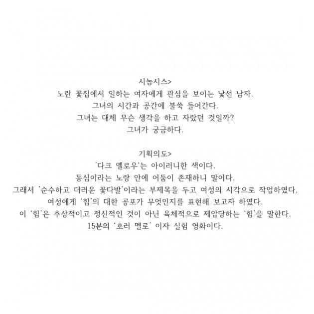 구혜선이 공개한 '다크 옐로우' 시놉시스와 기획의도. / 사진=구혜선 인스타그램
