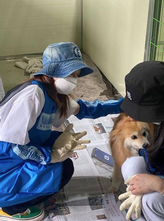"YG 떠난 산다라박, 유기동물 봉사활동 ""따듯한 하루"" [TEN★]"