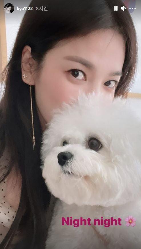 /사진=송혜교 인스타그램