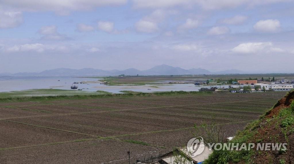 북한, 철새보호 위한 국제협력 강조…자연보호법에 '습지' 보완