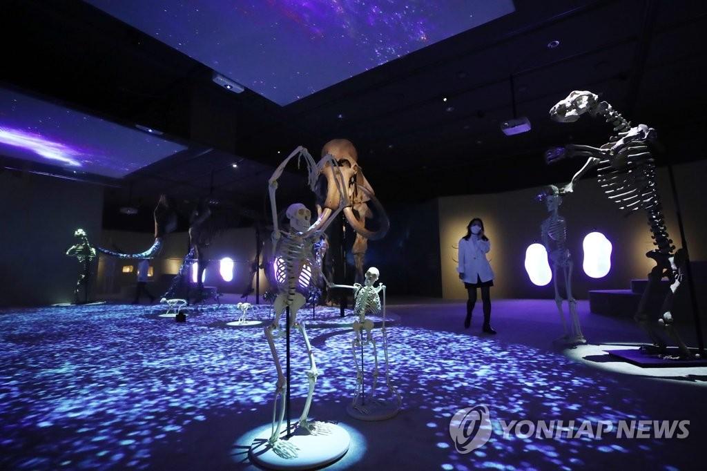 코로나 시대, 700만년 인류 진화의 여정을 돌아보다(종합)