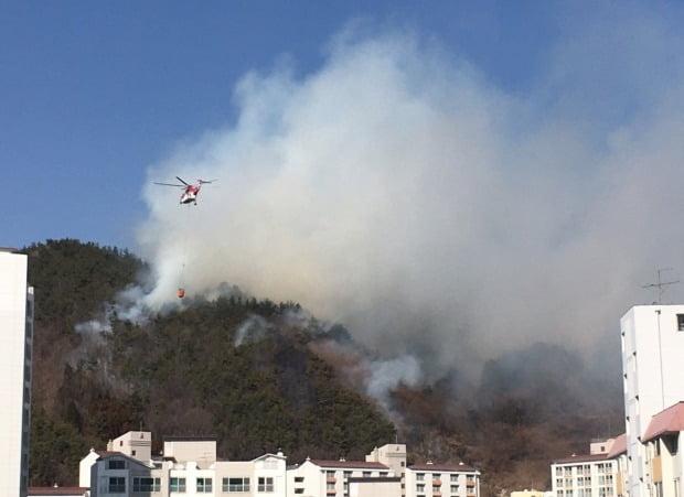 지난 2월 10일 전남 광양시 가야산에서 발생한 화재 /사진=연합뉴스