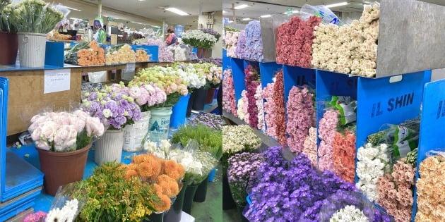△늦은 봄을 만끽할 수 있는 고속터미널 꽃 도매시장.
