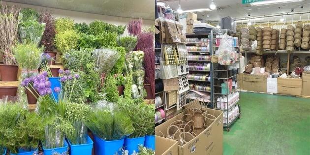 △(왼쪽부터)그린식물 판매 상가와 꾸미기 재료 판매 상가.