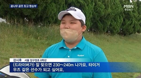 /사진=MBN 뉴스 캡처