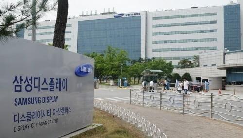 삼성디스플레이 아산캠퍼스 전경. 삼성디스플레이 제공.