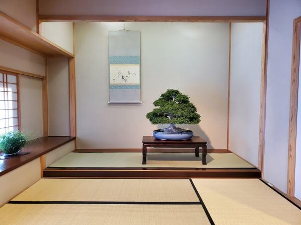 오미야분재미술관은 일본 전통의 다타미방에 전시된 분재를 감상할 수 있는 유일한 곳이기도 하다. 단풍, 겨울풍경 등 매주 그 시기에 가장 적합한 작품들을 교체해서 전시한다. 사이타마=정영효 특파원