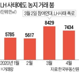 """""""농지 규제 전에 막차 타자""""…LH사태 터진 후, 논·밭 거래 44.7% 급증"""
