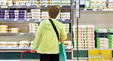 한 대형마트에서 소비자가 장을 보는 모습. 한경DB