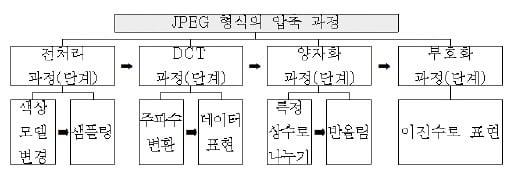 [신철수 쌤의 국어 지문 읽기] 과정을 단계별로 설명하는 것? 변화와 시간에 대한 인식의 산물