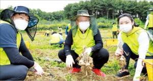 NH투자증권 '농번기 일손돕기'