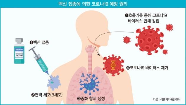 변이 바이러스 막자…불꽃 튀는 mRNA 백신 생산·개발 경쟁