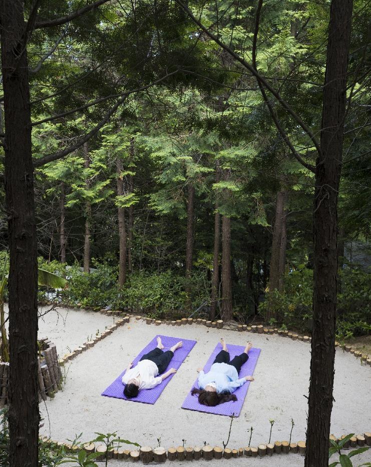[여기 어때] 짙푸른 편백 숲에서 '꿀잠'…부산·경남 웰니스 여행