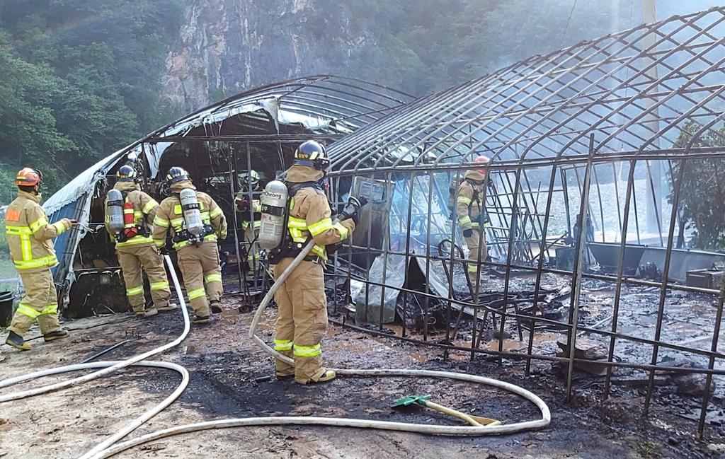 삼척 비닐하우스서 불…50대 여성 전신 화상