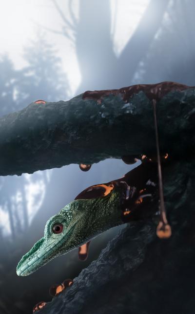 '벌새보다 작은 공룡' 호박 속 실제 주인공 도마뱀 확실해져
