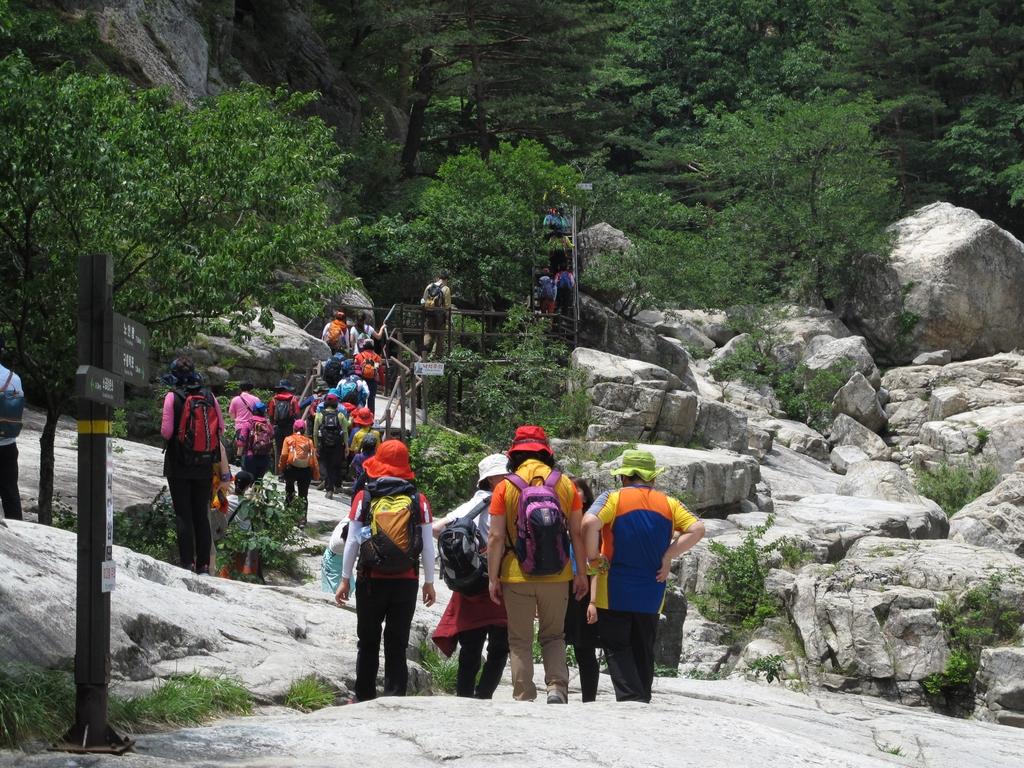 오대산국립공원 소금강계곡 탐방로 17일 개방