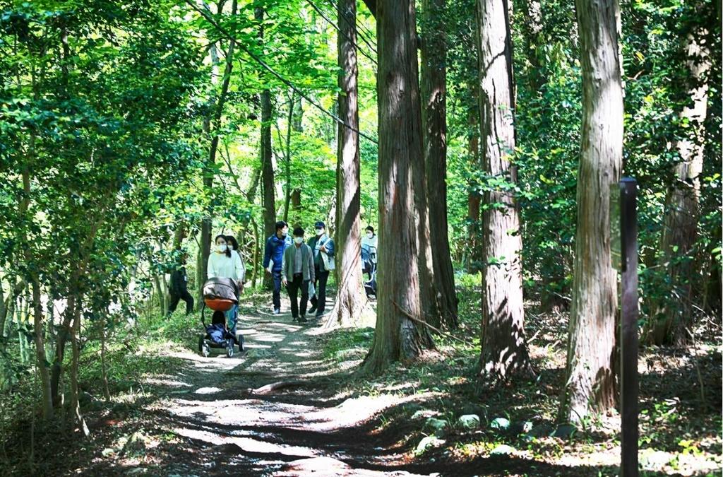 해남 두륜산 장춘숲길, 걷고싶은 전남숲길 최우수상