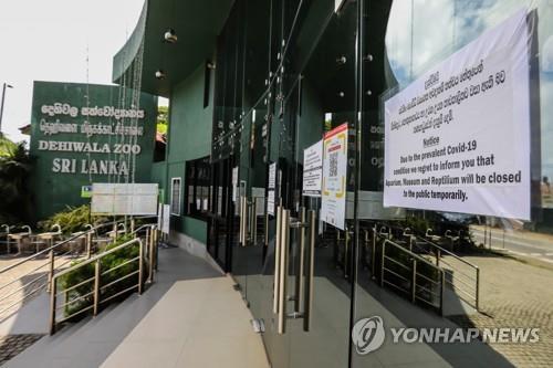 한국이 스리랑카에 선물로 준 사자, 코로나19에 감염돼