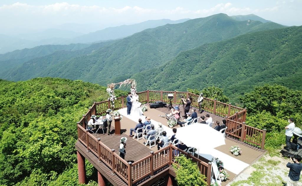 [픽! 단양] 초여름의 아름다운 신부…소백산 2번째 산상결혼식