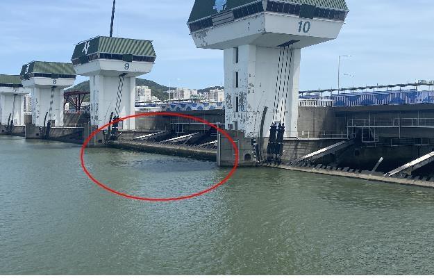 낙동강 하굿둑 2차 개방…민물-바닷물 섞인 구역 생태복원 추진
