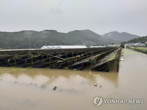 [물난리 그후] ② 마른하늘 물벼락…댐 방류 피해보상 '하세월'