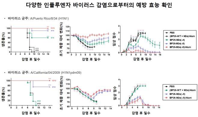 KAIST develops influenza vaccine capable of immunity to various mutations