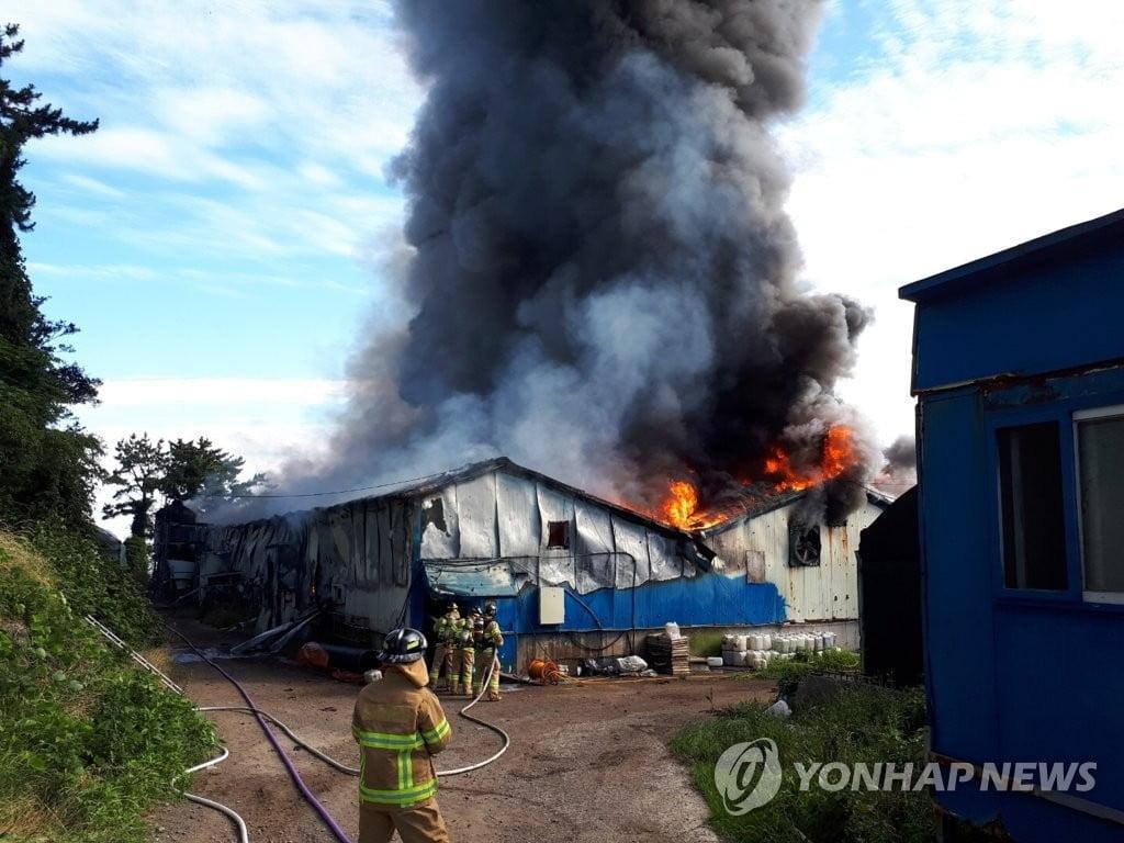 제주 양돈장 화재로 돈사 2천400㎡ 불타…대응 1단계 발령