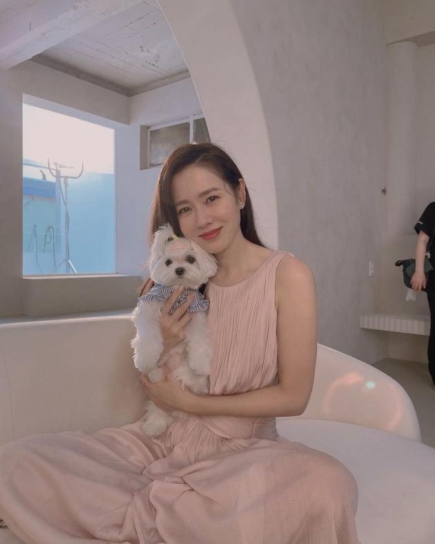 '현빈♥' 손예진, 핑크색 드레스 입은 사람 중에 제일 예뻐 [TEN★]