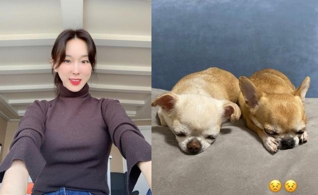 가수 이지혜(왼쪽)와 반려견/ 사진=인스타그램