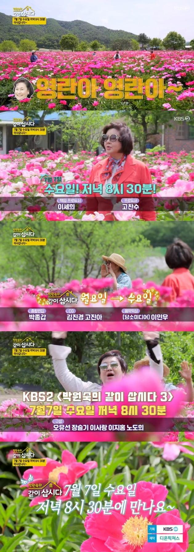 '박원숙의 같이 삽시다3' / 사진 = KBS 2TV 영상 캡처