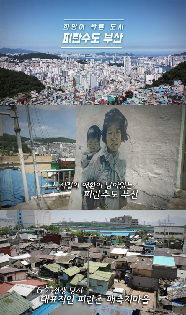 '희망이 싹튼 도시 피란수도 부산'의 주요 장면 / 사진제공=서경덕 성신여대 교수 연구팀