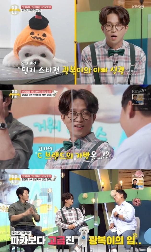 사진=KBS '동물티비' 방송 화면.