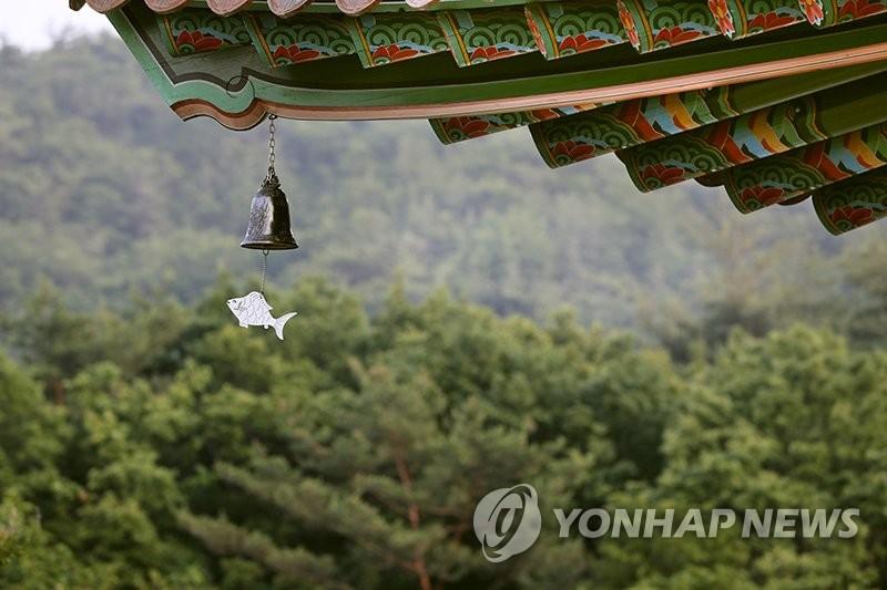 후덥지근 날씨에 이른 피서행렬…전국 유명산·해수욕장 '북적'