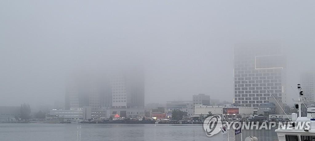 """강원 중북부 동해안 내일 아침까지 짙은 안개…""""교통안전 유의"""""""