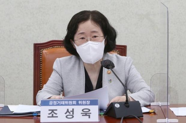 조성욱 공정거래위원장. 사진=연합뉴스